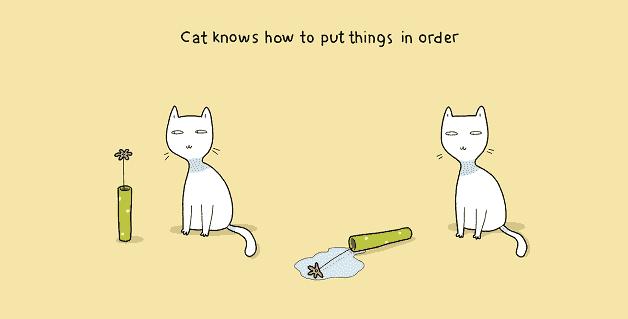 tenha-um-gato-em-casa-03