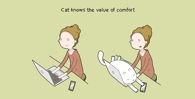 tenha-um-gato-em-casa-06
