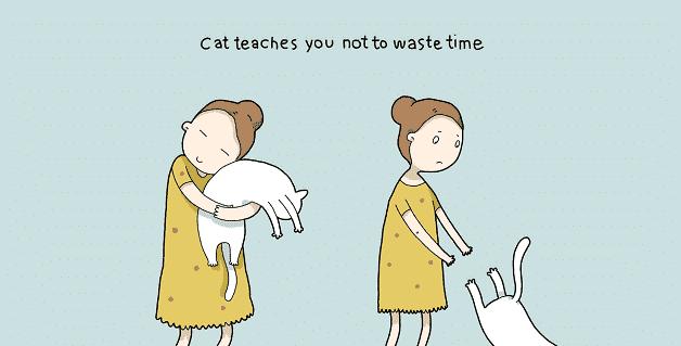 tenha-um-gato-em-casa-09