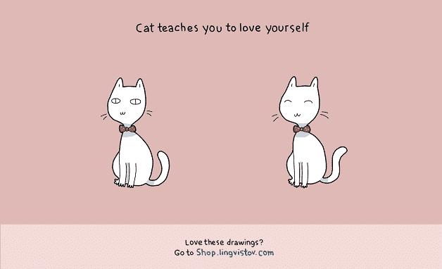 tenha-um-gato-em-casa-10