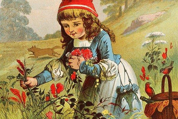 verdadeira-historia-chapeuzinho-vermelho-eutesalvo-tricurioso-3