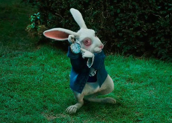 Terríveis Fatos Sobre Alice No País Das Maravilhas Tricurioso