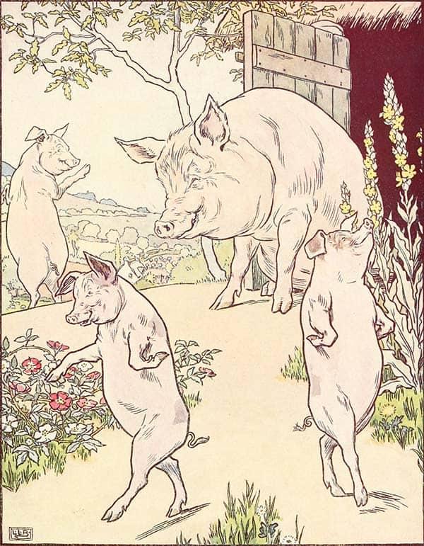 verdadeira-historia-tres-porquinhos-euteconto-tricurioso-1