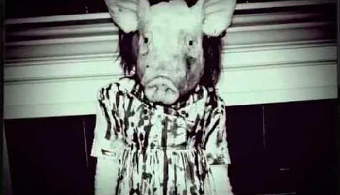 peppa-pig-creepypasta-euteconto-tricurioso-3
