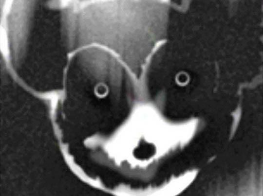 Suicidemouse creepypasta tricurioso mickey mouse055