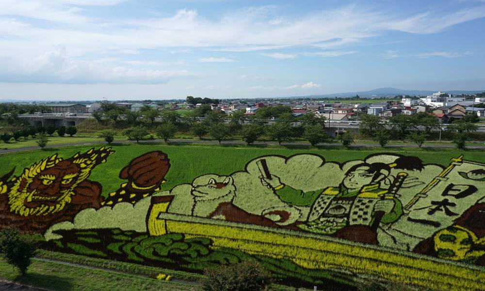 Tem Na Web - Conheça a belíssima arte em arrozais da vila Inakadate, no Japão