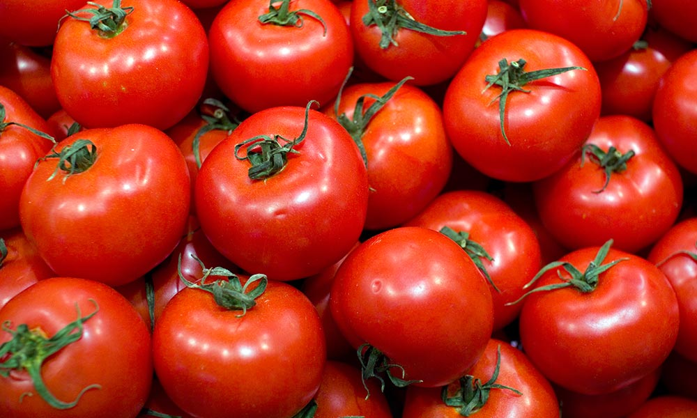 Tem Na Web - Quais são os benefícios do tomate para a saúde?