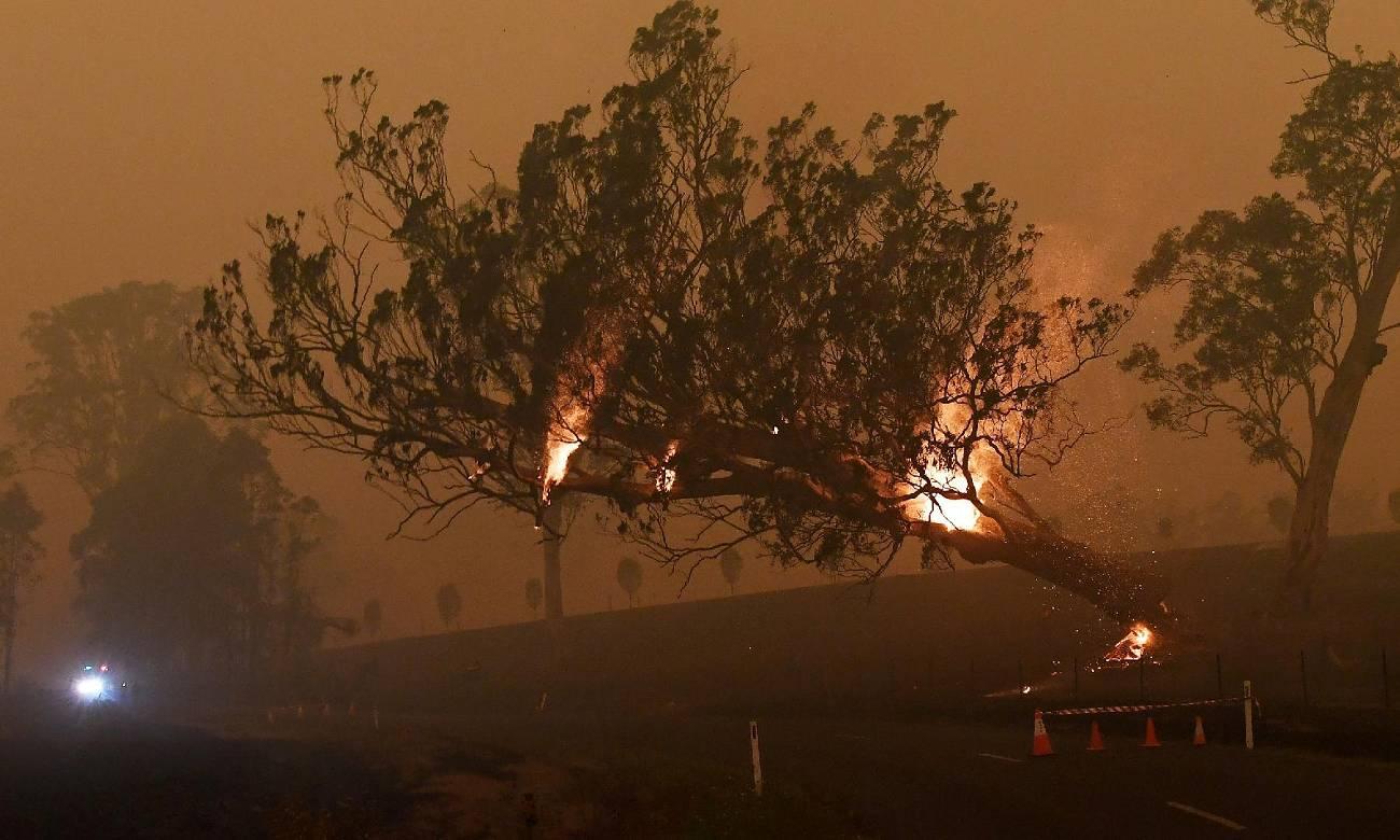 Confira algumas celebridades que fizeram doações para ajudar os bombeiros australianos
