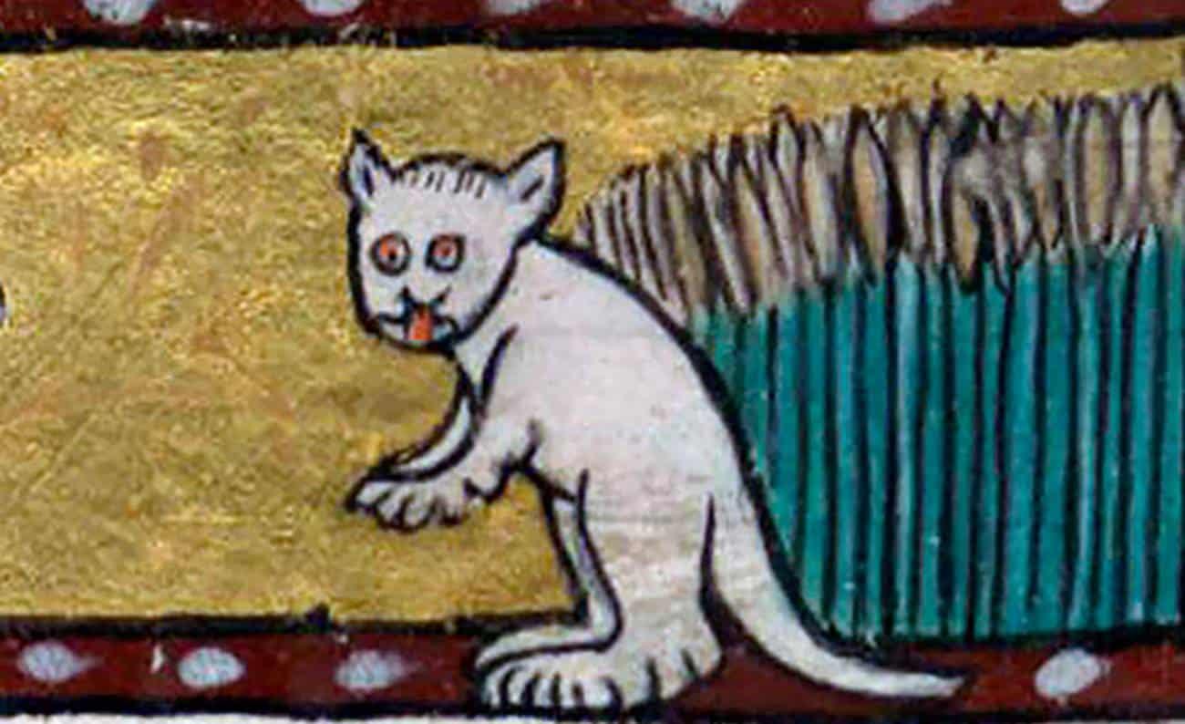 Gatos das pinturas medievais